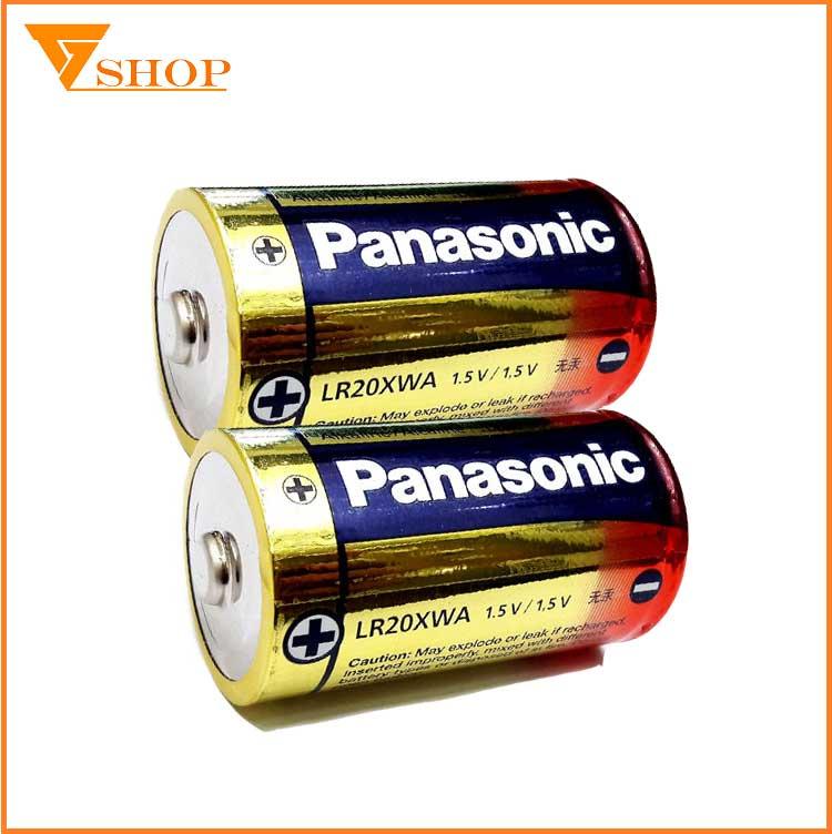 Pin Panasonic D
